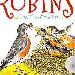 robins-classroom