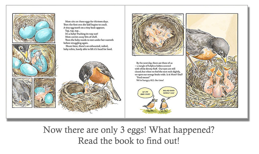 Now there are only 3 eggs! What happened? Read the book to find out!