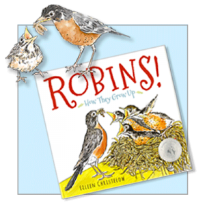 whats-new-robins-2